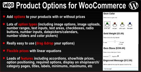 ایجاد فیلد های دلخواه محصولات ووکامرس با Product Options نسخه 2.4.1