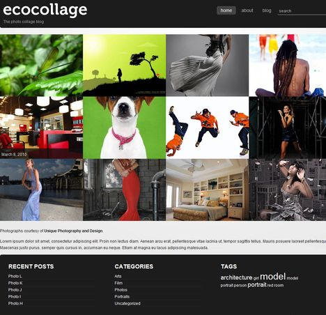 پوسته گالری تصاویر وردپرس Ecocollage